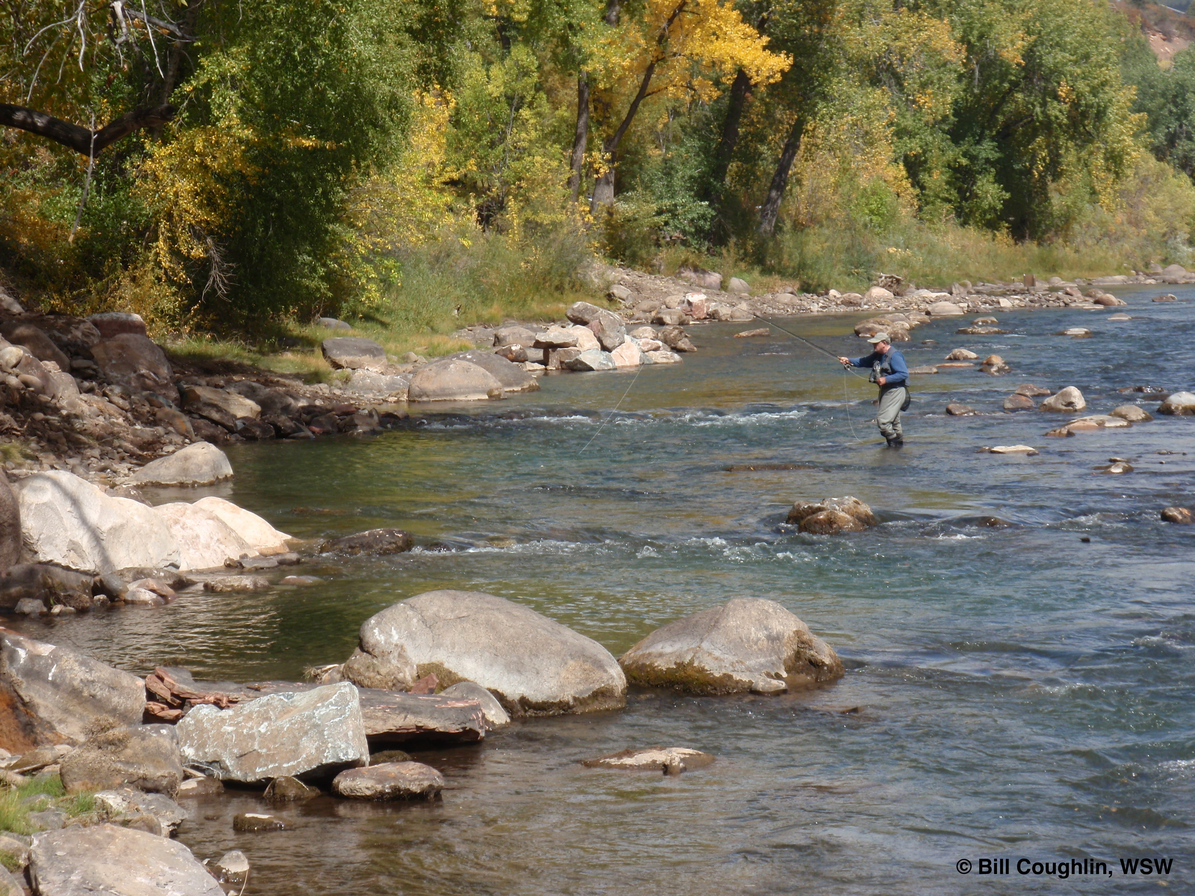 Animas River Picture-Exemplary Project of the Year, 2009 - Colorado Trout Unlimited.  Animas River, Durango, CO